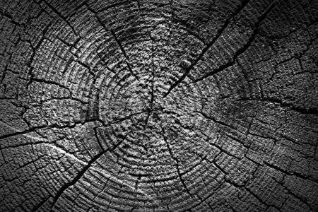 Black Wood Texture Natural y expuesto Foto de archivo - 88297417