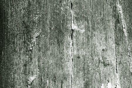 Textura de madera verde en blanco con grandes detalles Foto de archivo - 88297428