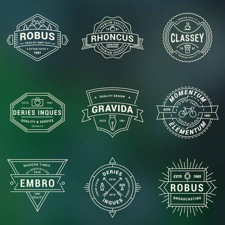 badge: Set of Hipster Vintage Labels, Badges. Thin Line Design Template