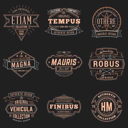 Set of Hipster Vintage Labels, Badges for Your Business