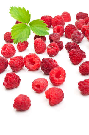 fresh raspberry and green leaf isolated on a white background Stock Photo - 10020900