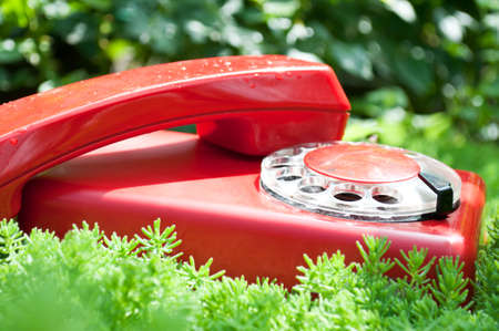 red and old telephone on a green grass background photo