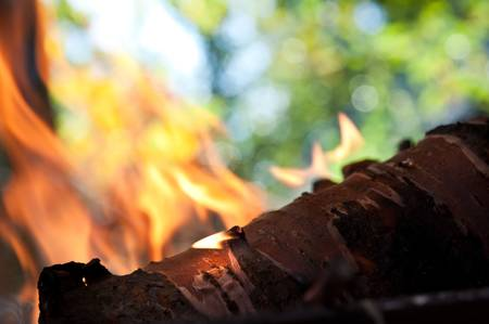stoking: Dry sticks of wood burn in the fire background