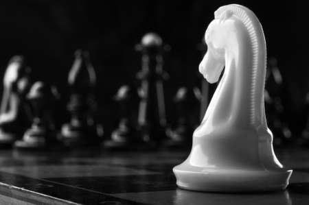 white knight chess piece on the board background photo