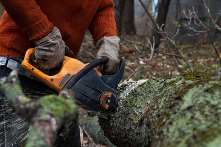 man cuts wood with electric saw in the wood