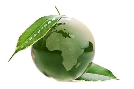 paz mundo: Protected Planet verde con hojas aisladas sobre un fondo blanco Foto de archivo