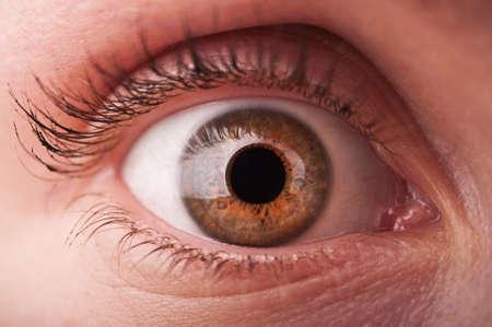 closeup of woman eye background photo