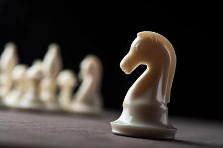 maneuver: white chess knight on background Stock Photo