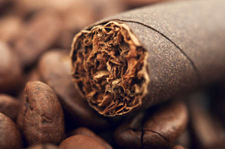 cigar and coffee beans on background photo