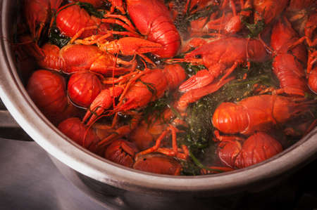 Crayfish in pan on background photo