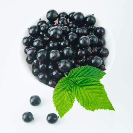 produce energy: fresh currant berry on white plate