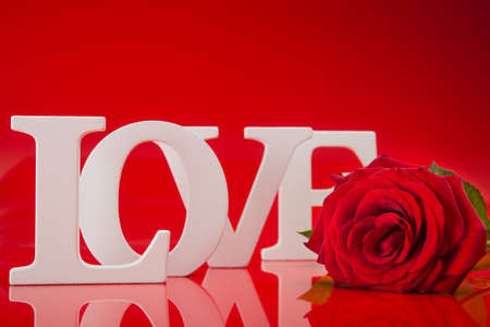 Big love words with red rose flower on red background photo