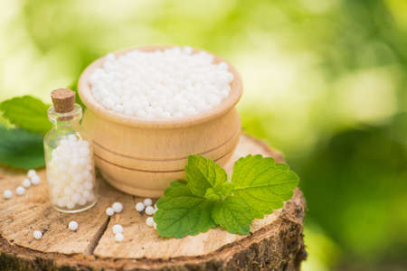 Greeb natural eco medicine treatment of homeopathy globules on a wooden stump forest. copy space