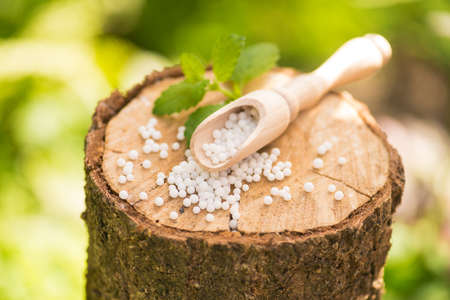 Greeb natural eco medicine treatment of homeopathy globules on a wooden stump forest. Stock Photo