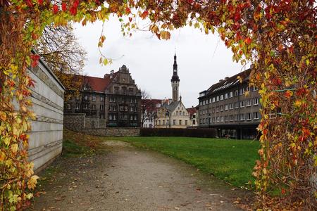 tallin: Old Tallin view through the arch of autumn listvy estoniya evropa