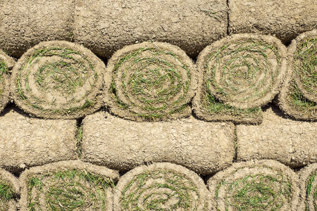 lawn rolls stacked photo
