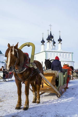 Horse harnessed to a sledge. Suzdal, Russia photo
