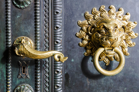 front door: gold handle and knocker with lion