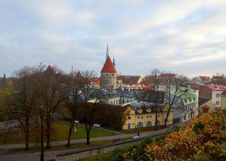 tallinn: foggy morning in Tallinn