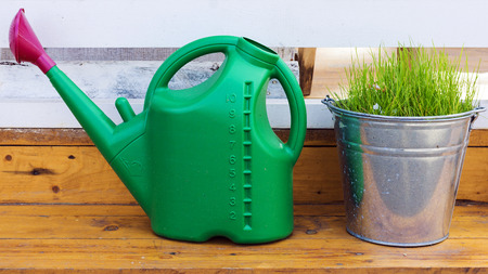 galvanised: green watering can and galvanized bucket of grass in the garden