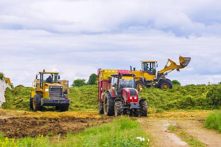 사일리지 수확 용 농업 기계 스톡 콘텐츠