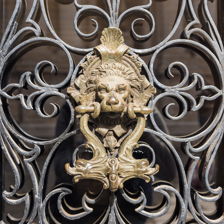 brass door handle on the door lion.