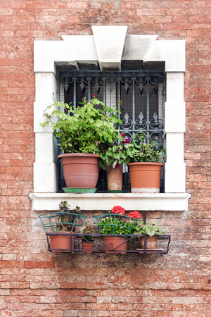 window with flowers in a red brick house 스톡 콘텐츠