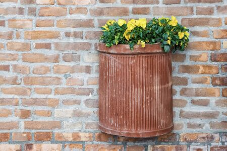 clay pots with flowers on a brick wall 版權商用圖片