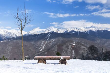 bench in the snowy mountains Banque d'images - 137548040