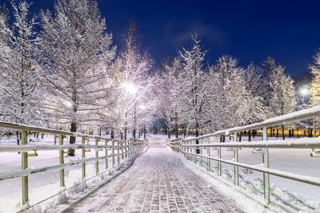 Walkway in a snowy park. Evening view Banque d'images - 137798274
