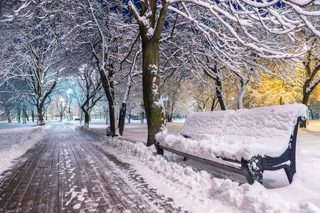 snow-covered bench in the evening park Banque d'images - 137798285