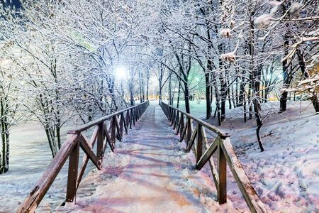 wooden bridge in a snowy park in the evening Banque d'images - 137798231