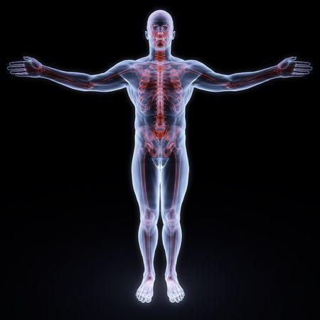 chest x ray: umano a raggi x con sceleton rosso  Archivio Fotografico