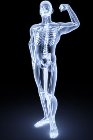 skeletal: human body by X-rays. 3d render
