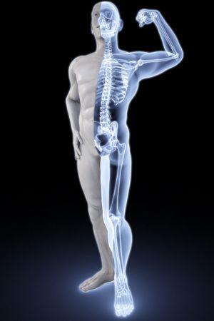 bone anatomy: mans body under X-rays.