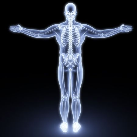 human anatomy: human body by X-rays. 3d render