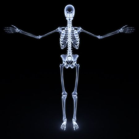 x rays: human skeleton x-ray. isolated on white