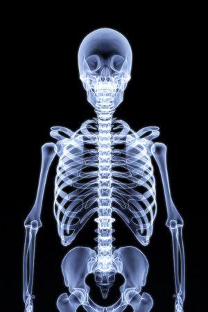 chest x ray: scheletro umano sotto i raggi X. rendering 3D