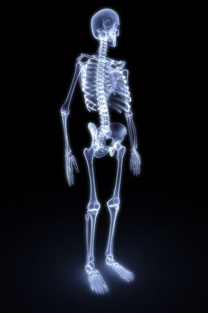 chest xray: human skeleton under the X-rays. 3d render