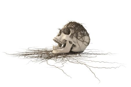 gruesome: human skull with a trailing vine.