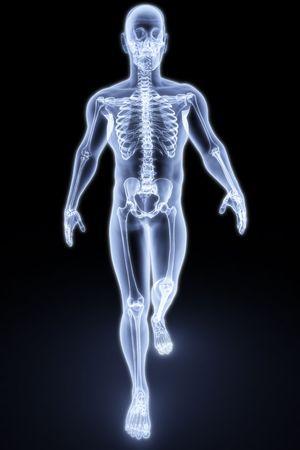x ray skeleton: walking man under X-rays. 3d render.