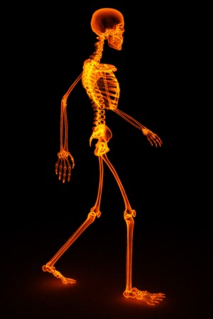 walking skeleton by X-rays in red. 3D image. photo