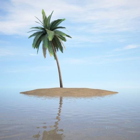 onbewoond: palmboom op een klein onbewoond eiland. 3D-beeld. Stockfoto