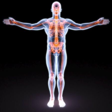 anatomia humana: cuerpo de hombre bajo los rayos X. huesos est�n resaltados en rojo.