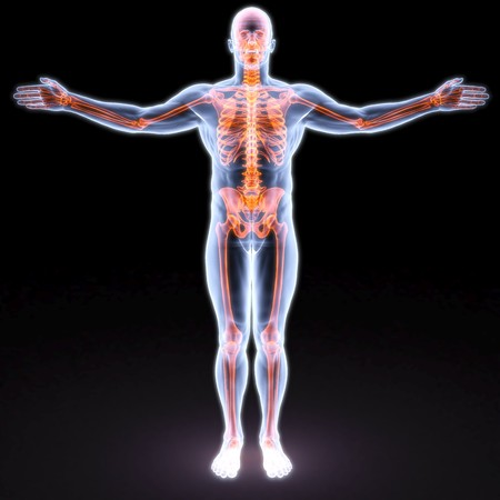 man's body under X-rays. bones are highlighted in red. Stock Photo - 7999427