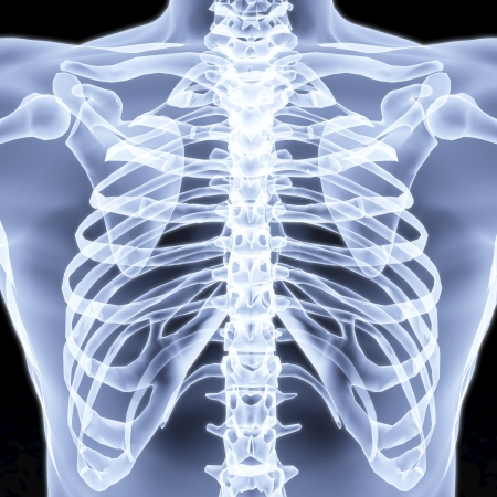medical scans: Mens chest X-rays under. 3d image.