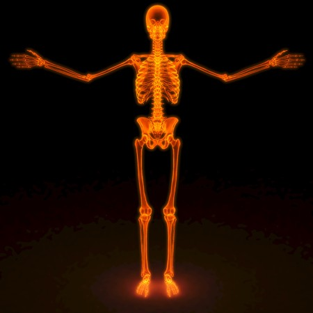 skeleton of a man under the red rays X-rays. photo