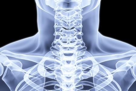 cuello del hombre bajo los rayos X. imagen 3D.