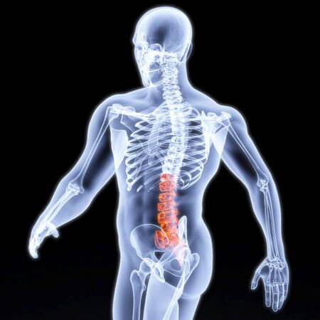 medical scans: mans body under X-rays.. backbone is highlighted in red.