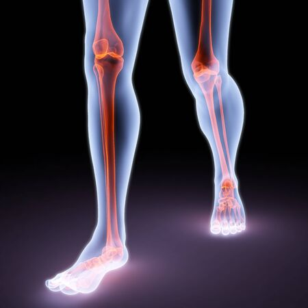 feet walking person under X-rays. bones are highlighted in red. Stock Photo - 8057719